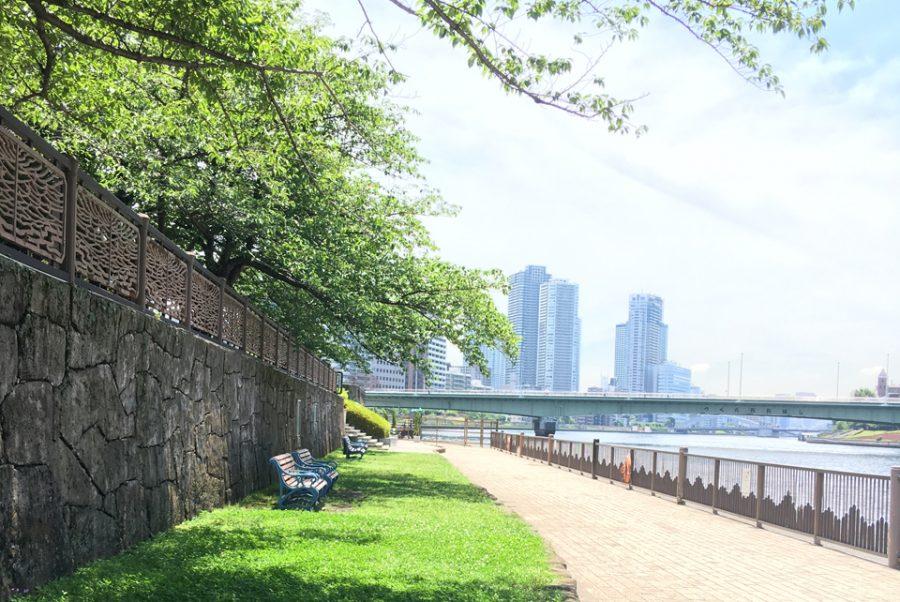 5月4日(祝) 独身限定【ピクニックワイン会】 in 月島